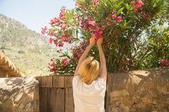 Woman picking flowers Stock Image