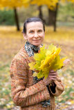 Woman Picking Leaves in Autumn Stock Photos