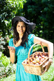 Woman picking litchis Stock Image