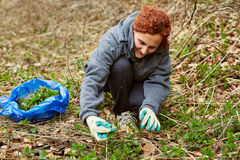 Woman picking nettle leaves Royalty Free Stock Photos