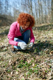 Woman picking nettles Stock Images