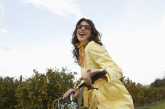Woman Picking Oranges. Elegant young woman riding a motorbike in an orange grove royalty free stock photography