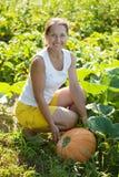 Woman  picking pumpkin Royalty Free Stock Image