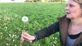 Woman picking up and blowing a dandelion flower. Middle aged woman picking up and blowing a dandelion flower in a summer field stock video footage