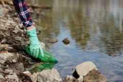 Woman picking up dump on dirty forest stock photography