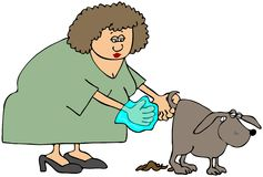 Woman Picking Up After Her Dog Royalty Free Stock Image