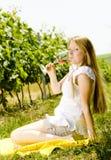 Woman at a picnic Royalty Free Stock Images