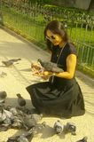 Woman with pigeons stock photos