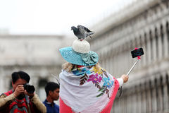 Woman with pigeons in Venice, selfie stick Stock Images