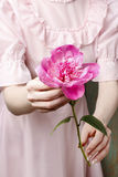 Woman in pink dress holding stunning pink peony Royalty Free Stock Images