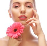 Woman with pink gerber flower Stock Images