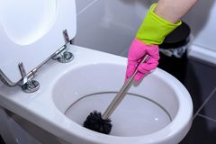 Woman in pink gloves cleaning the toilet. Woman in pink gloves cleaning out the toilet bowl with a brush to remove germs and bacteria under the rim in a concept Stock Photos