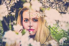 Woman With Pink Lipsticks and Blonde Taking Photo With White Petaled Flowers Stock Image