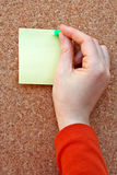 Woman placing blank note. In the cork board stock photo