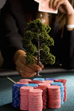 Woman placing model tree on pile of gambling chips on table, mid section Royalty Free Stock Photography