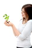 Woman with a plant Royalty Free Stock Images