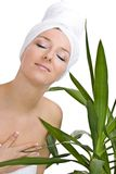 Woman  plant Royalty Free Stock Images