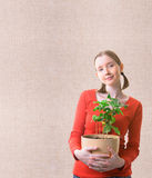 Woman with a plant. Young woman holding the plant in the pot over textured background Royalty Free Stock Image