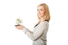 Woman with plant and dirt in hand Stock Images