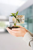 Woman with plant and euros in hand Royalty Free Stock Photo