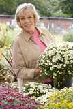 Woman with plant in garden center, smiling, portrait Royalty Free Stock Images