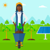 Woman with plant and wheelbarrow. Royalty Free Stock Photos