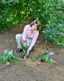 Woman planting flowers in  garden Stock Image