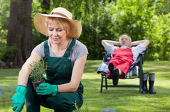 Woman planting flowers and resting man Royalty Free Stock Photos
