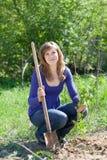 Woman planting raspberry Stock Photos