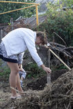 Woman planting seedling Royalty Free Stock Photo