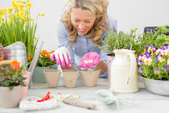 Woman planting seeds Royalty Free Stock Photo
