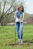 Woman planting tree Stock Photography