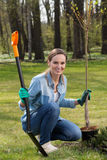 Woman planting young tree. In spacious garden stock image