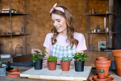 Woman with plants in flowerpots Royalty Free Stock Photos