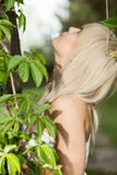 Woman in plants looking up Royalty Free Stock Photo