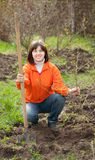Woman plants tree  in spring garden. Young woman plants tree  in spring garden Royalty Free Stock Photos