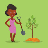 Woman plants tree vector illustration. An african-american woman plants a tree. Woman standing with shovel near newly planted tree. Young woman gardening Royalty Free Stock Photography