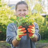 Woman with plants Royalty Free Stock Photo