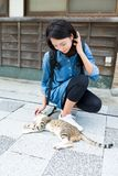 Woman play with cat Royalty Free Stock Photos