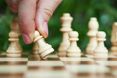 Woman play chess Stock Images
