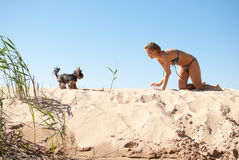 Woman play dog sea summer. Terrier yorkshire bikini Stock Images