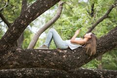Woman play smartphone on big tree. Asian Beautiful happy  woman lying on big tree  and playing social media from smartphone. Brunette girl relax in summer park Stock Photos