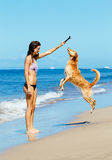 Woman Playiing with Dog Jumping into the Air Stock Photography