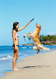 Woman Playiing with Dog Jumping into the Air Royalty Free Stock Photography