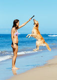 Woman Playiing with Dog Jumping into the Air Stock Photos