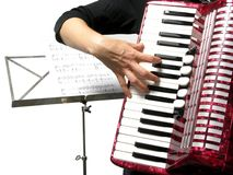 Woman playing accordion Stock Images