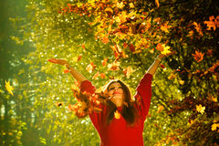 Woman playing with autumnal leaves. Royalty Free Stock Images