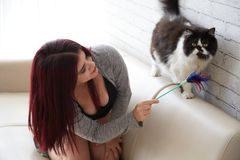 Woman playing with cat at home royalty free stock photos