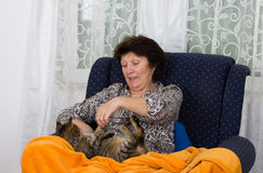 Woman playing with cat Stock Image