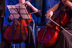 Woman playing the cello in the orchestra royalty free stock photos